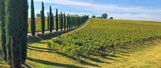 Необычный авторский тур по Италии